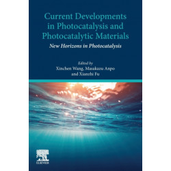 Current Developments in Photocatalysis and Photocatalytic Materials: New Horizons in Photocatalysis