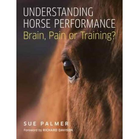 Understanding Horse Performance: Brain, Pain or Training?