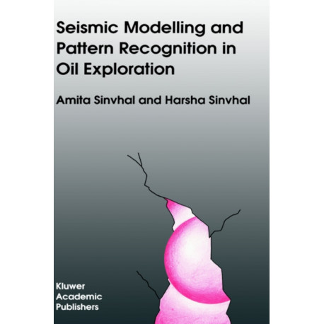 Seismic Modelling and Pattern Recognition in Oil Exploration