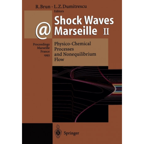 Shock Waves @ Marseille II: Physico-Chemical Processes and Nonequilibrium Flow Proceedings of the 19th International Symposium on Shock Waves Held at Marseille, France, 26-30 July 1993