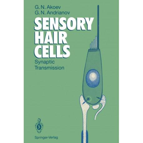 Sensory Hair Cells: Synaptic Transmission