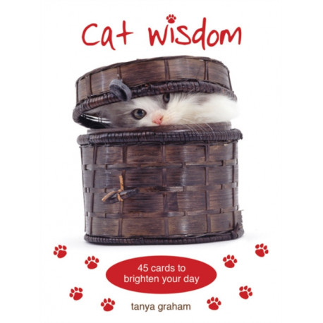 Cat Wisdom Cards: 45 Cards to Brighten Your Day