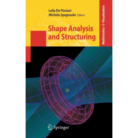 Shape Analysis and Structuring
