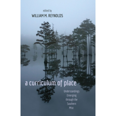 a curriculum of place: Understandings Emerging through the Southern Mist