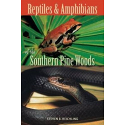 Reptiles and Amphibians of the Southern Pine Woods