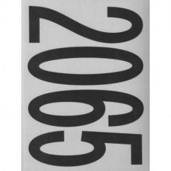 Lawrence Lek: 2065