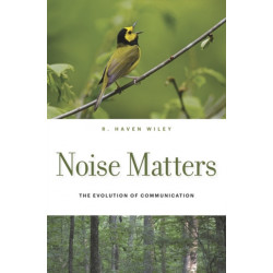 Noise Matters: The Evolution of Communication