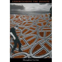 Understanding the Infinite