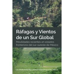 Rafagas y Vientos de un Sur Global- Movilidades recientes en estados fronterizos del sur-sureste de Mexico: Movilidades Recientes En Estados Fronterizos del Sur-Sureste de Mexico