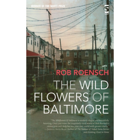 The Wildflowers of Baltimore
