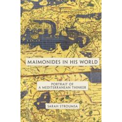 Maimonides in His World: Portrait of a Mediterranean Thinker