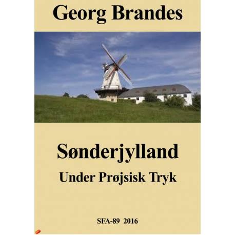 Sønder jylland, under prøjsisk tryk