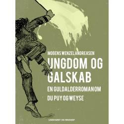 Ungdom og galskab: en guldalderroman om Du Puy og Weyse
