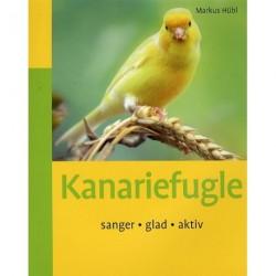 Kanariefugle: sanger, glad, aktiv