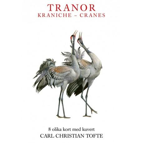 Tranor - Kraniche - Cranes
