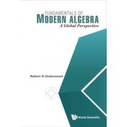 Fundamentals Of Modern Algebra: A Global Perspective