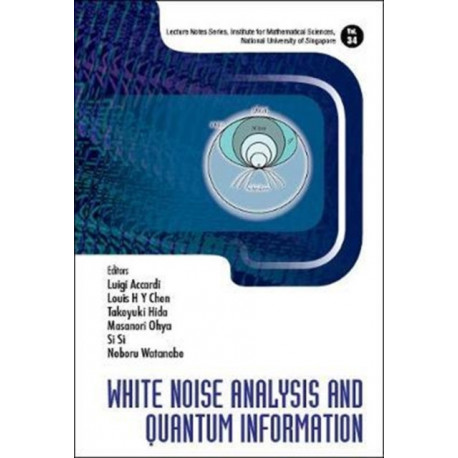 White Noise Analysis And Quantum Information