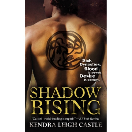 Shadow Rising: Number 3 in series