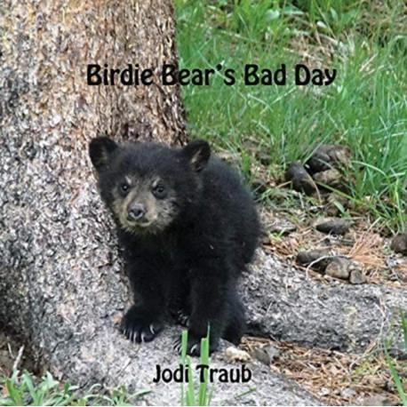 Birdie Bear's Bad Day