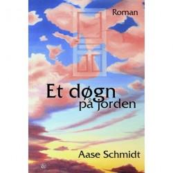 Et døgn på jorden: roman