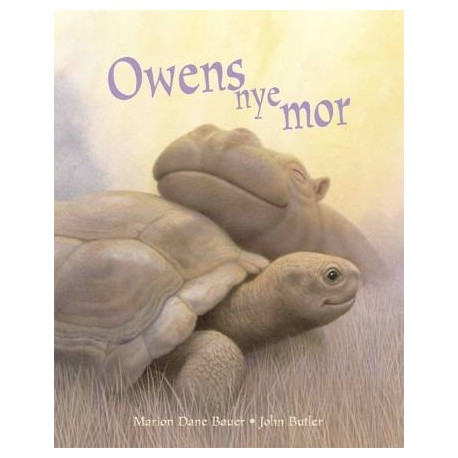 Owens nye mor