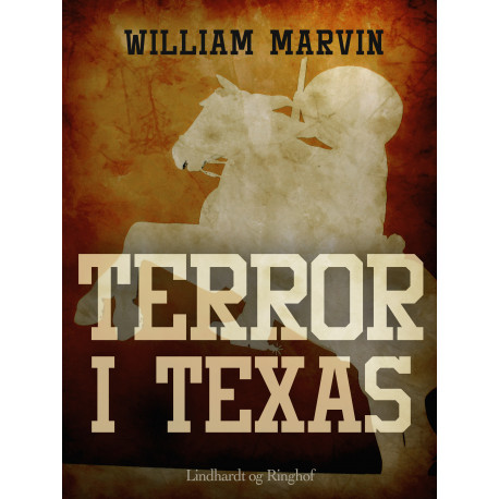 Terror i Texas