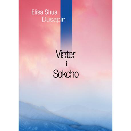 Vinter i Sokcho