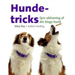 Hundetricks: Sjov aktivering af din kloge hund