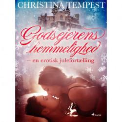 Godsejerens hemmelighed - en erotisk julefortælling
