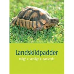 Landskildpadder: rolige, venlige, pansrede