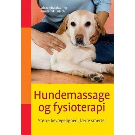 Hundemassage og fysioterapi: bedre bevægelighed og lindring af smerter