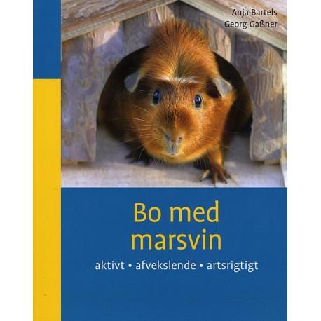 Bo med marsvin: aktivt, afvekslende, artsrigtigt