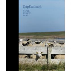 Trap Danmark: Varde, Esbjerg, Fanø: Trap Danmark, 6. udgave, bind 14
