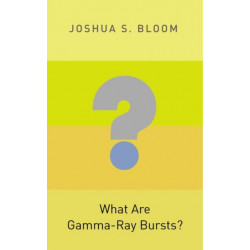 What Are Gamma-Ray Bursts?