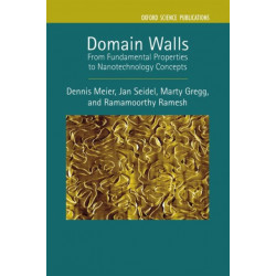 Domain Walls: From Fundamental Properties to Nanotechnology Concepts