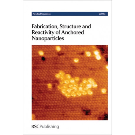 Fabrication, Structure and Reactivity of Anchored Nanoparticles: Faraday Discussion 162