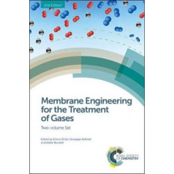Membrane Engineering for the Treatment of Gases: Two-volume Set