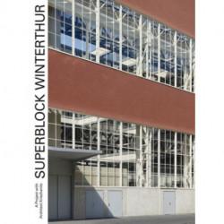 Superblock Winterthur - A Project with Architect Krischanitz
