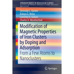 Modification of Magnetic Properties of Iron Clusters by Doping and Adsorption: From a Few Atoms to Nanoclusters