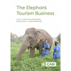 The Elephant Tourism Business