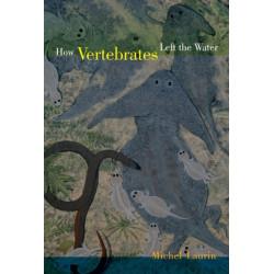How Vertebrates Left the Water