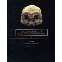 Homo erectus: Pleistocene Evidence from the Middle Awash, Ethiopia