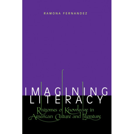 Imagining Literacy: Rhizomes of Knowledge in American Culture and Literature