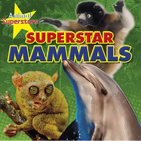 Animal Superstars Pack A of 4
