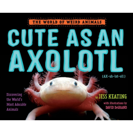 Cute as an Axolotl: Discovering the World's Most Adorable Animals