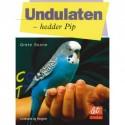 Undulaten - hedder Pip