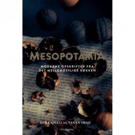 Mesopotamia: moderne opskrifter fra det mellemøstlige køkken