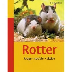 Rotter: kloge, sociale, aktive