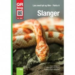 Slanger: Læs med lyd og film