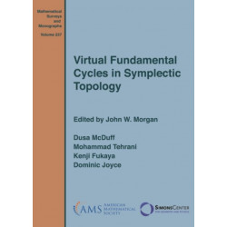 Virtual Fundamental Cycles in Symplectic Topology